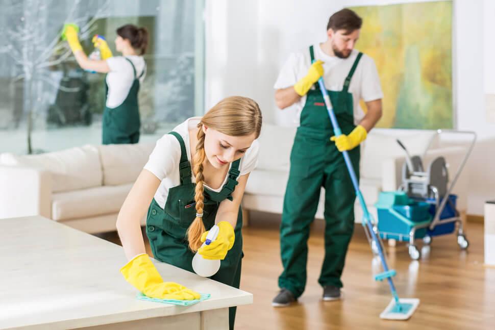 Çamlıca Temizlik Şirketi